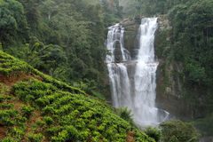 Ramboda falls in Sri Lanka Royalty Free Stock Images