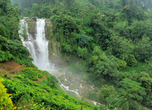 Ramboda falls in Sri Lanka Stock Image