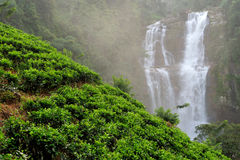 Ramboda falls in Sri Lanka Royalty Free Stock Image