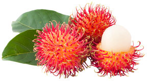 Ramboutan asiatique de fruit Photographie stock