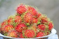 Ramboutan rouge frais, fruit tropical photographie stock