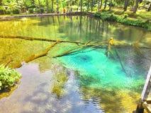 Rambut Monte jezioro Obrazy Stock