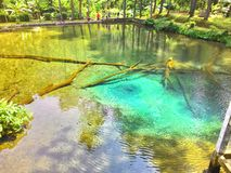 Rambut Monte Lake Arkivbilder