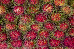 Rambutan εύγευστη και φτηνή Ταϊλάνδη μόνο Στοκ φωτογραφία με δικαίωμα ελεύθερης χρήσης