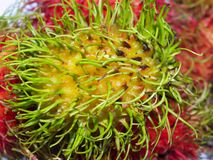 Rambutan 01 Royalty Free Stock Photography