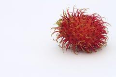 Rambutan Royaltyfria Bilder
