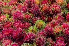 Rambutan background Stock Photos