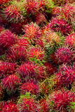 Rambutan background Royalty Free Stock Photography