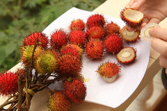Rambutan berries with hands peeling Royalty Free Stock Photos