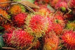 Rambutan. Closeup of tropical rambutan fruits at the market royalty free stock photo