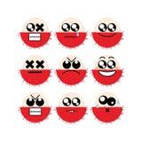 Rambutan da cara do ícone Fotografia de Stock