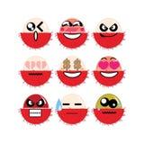 Rambutan da cara do ícone Imagem de Stock Royalty Free