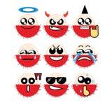 Rambutan da cara do ícone Imagem de Stock