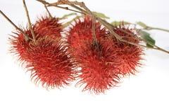 Rambutan do nome da fruta de Ásia fotos de stock royalty free