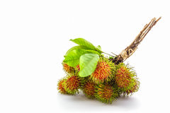 Rambutan dulce fresco, fruta tropical fotografía de archivo libre de regalías