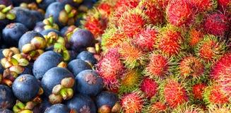 Rambutan e mangustão Fotografia de Stock Royalty Free