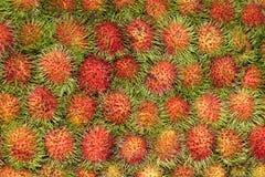 Rambutan-exotisk frukt-Sapindaceae Royaltyfria Foton