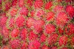 Rambutan fresco imagen de archivo
