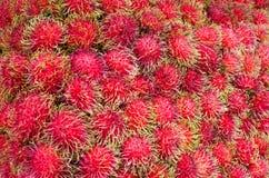 Rambutan fresco fotografía de archivo libre de regalías
