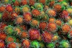 Rambutan fresh fruit background. Stock Photos