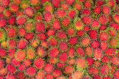 Rambutan in Fresh Fruit Market Stock Image