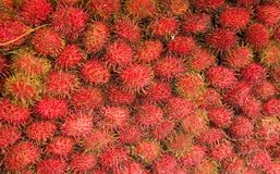 Rambutan fruit. Background of ripe red tropical Rambutan fruit Stock Images