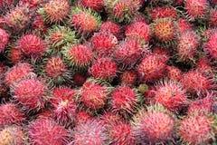 Rambutan fruit Royalty Free Stock Photography