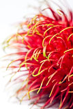 Rambutan fruit, Abstact background Royalty Free Stock Photo