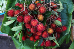 Rambutan fruit bunch on the fruit market in Asia Royalty Free Stock Images