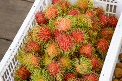 Rambutan fruit. Close up red rambutan fruit Stock Images