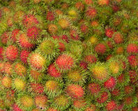 Rambutan fruit closeup. Background on market Stock Photo