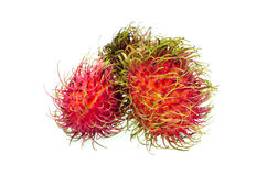Rambutan fruit Royalty Free Stock Photography