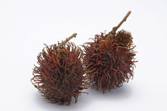Rambutan fruit. Isolated on a white background Stock Photos