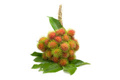 Rambutan fruit with leaf Royalty Free Stock Image