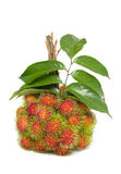 Rambutan fruit with leaf Royalty Free Stock Photos