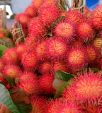 Rambutan  fruit market in Thailand. Fresh Rambutan  tropical fruit market in Thailand Royalty Free Stock Images