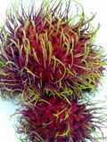 Rambutan. Fruit rad garden delicious green sweet Royalty Free Stock Image