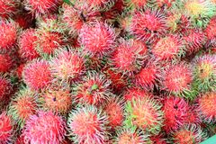 Rambutan fruit Royalty Free Stock Images