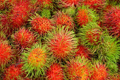 Rambutan fruit of thailand Royalty Free Stock Photo