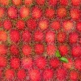 Rambutan fruit , Thailand. Rambutan fruit on a background Stock Photos