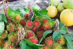 Rambutan fruit, Thailand. Rambutan fruit, best fruit of Thailand Stock Photos