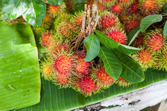 Rambutan fruit, Thailand. Rambutan fruit, best fruit of Thailand Stock Image