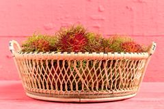 Rambutan fruit on wood color pink. in basket.  Stock Images
