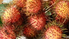 Rambutan Fruit Stock Photo