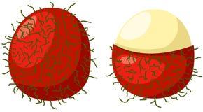 Rambutan fruits Stock Photos