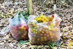 Rambutan fruits in bag Stock Photo