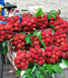 Rambutan fruits delivered by bicycle Royalty Free Stock Images