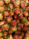 Rambutan fruits. A tray of red hairy rambutan fruits Royalty Free Stock Image