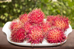Rambutan Fruits. From tropical country Stock Photography