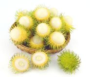 Rambutan Gading Fruits in a Basket. A tropical fruits of Rambutan Gading arranged in a Basket Stock Images
